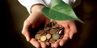 Démarches environnementales : un plus pour la productivité?