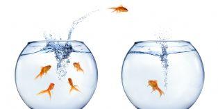 Sécuriser le transfert de salariés à l'occasion d'une acquisition
