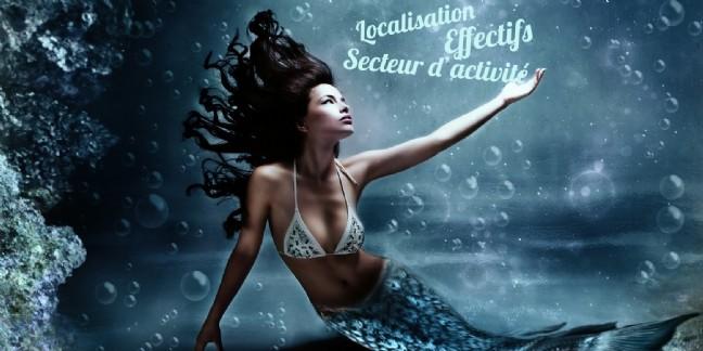 Le répertoire Sirene accessible gratuitement en 2017