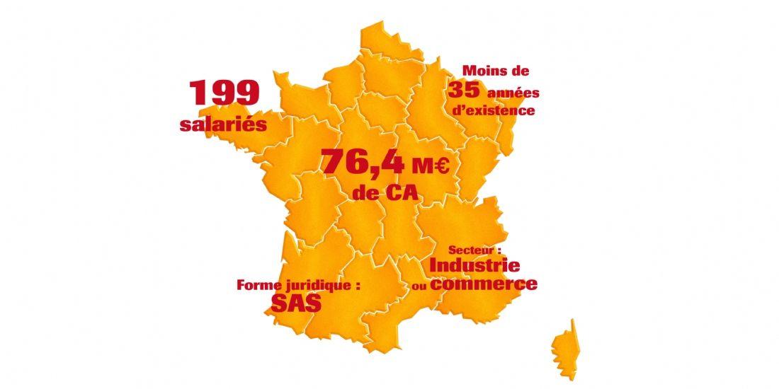 [Infographie] Entre PME et ETI, qui sont les entreprises de taille moyenne françaises?