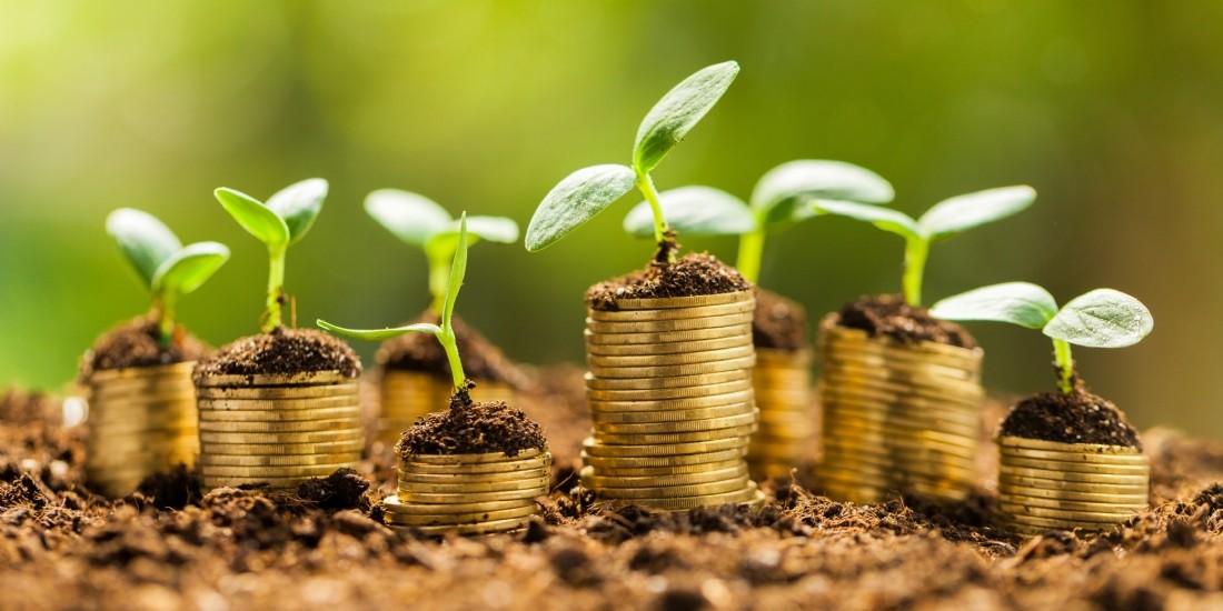 Bertrand Swiderski, directeur RSE du groupe Carrefour : ' La direction financière est de plus en plus intéressée par le sujet RSE '