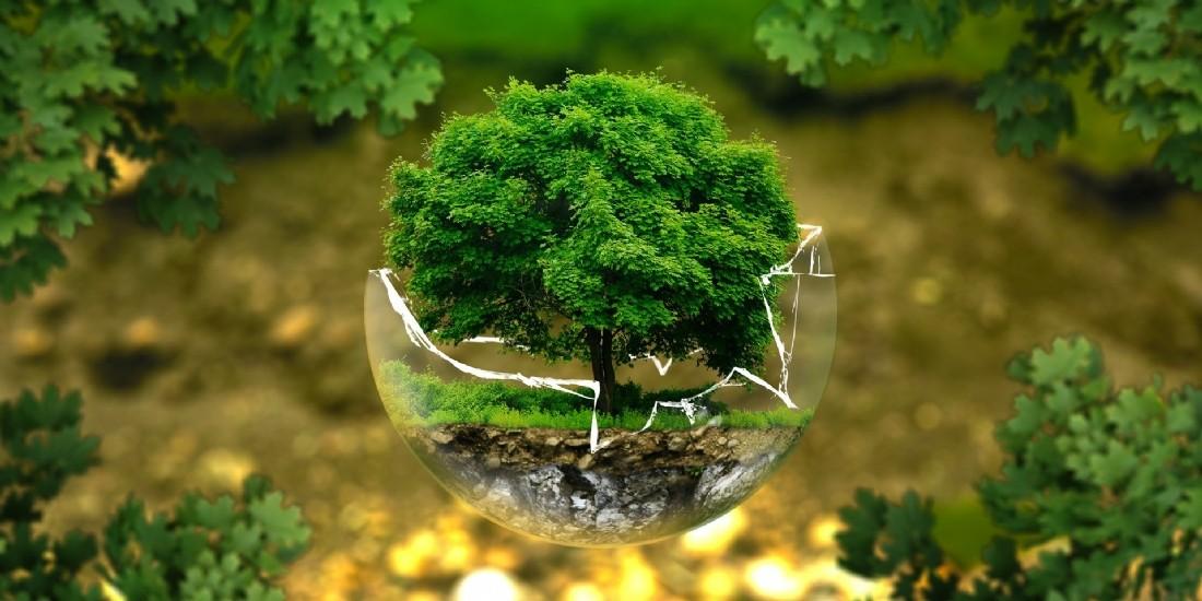 Des PME européennes soucieuses de leur durabilité