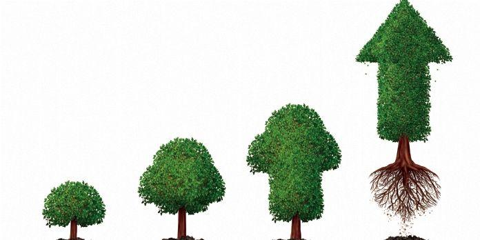 Et si le développement durable contribuait à la performance financière des entreprises ?