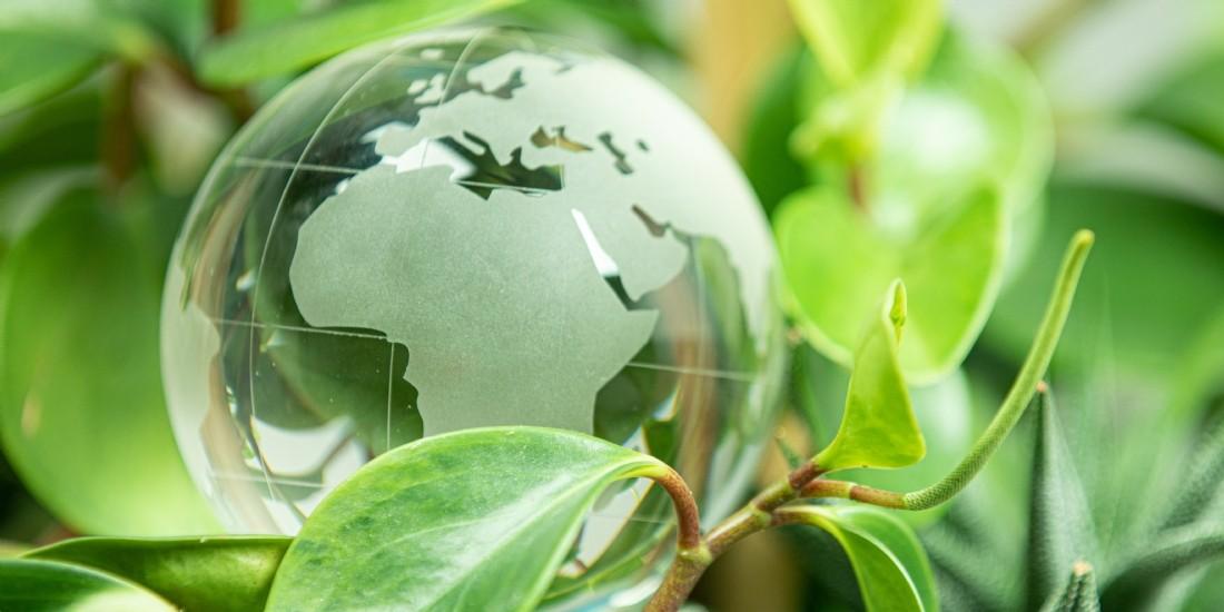 Rexel passe au développement durable