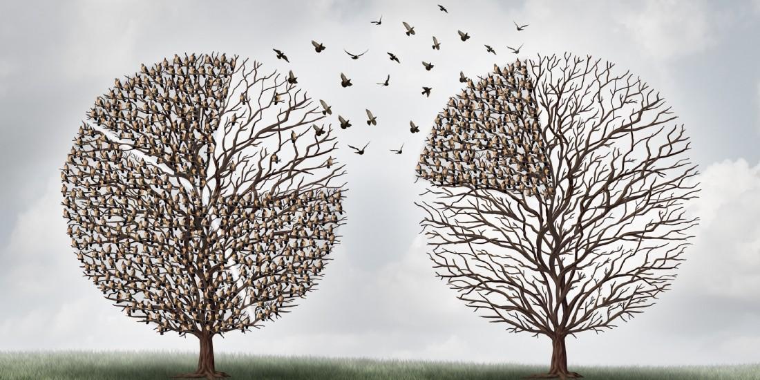 Investir dans la maturité financière de votre entreprise post Covid (partie 2)