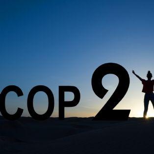 Qu'est-ce que la COP21? | Dossier : [COP21] Passez au vert pour améliorer vos performances