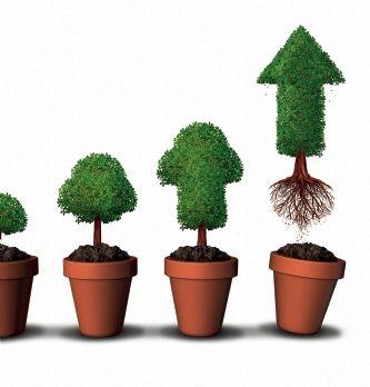 Première croissance forte de l'entreprise, croissance externe... Des risques spécifiques | Dossier : La direction financ...