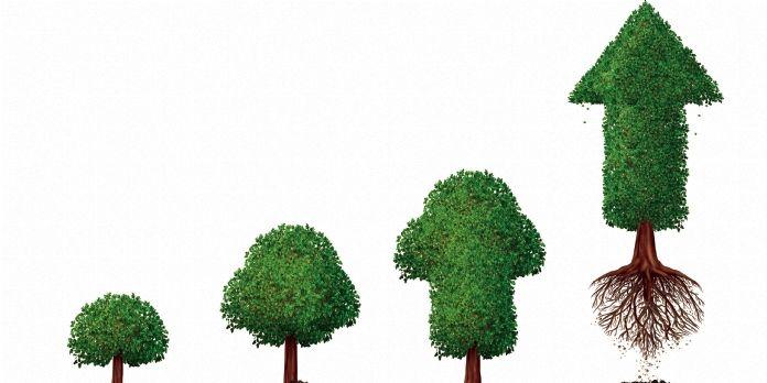 Dossier   Première croissance forte de l'entreprise, croissance externe... Des risques spécifiques
